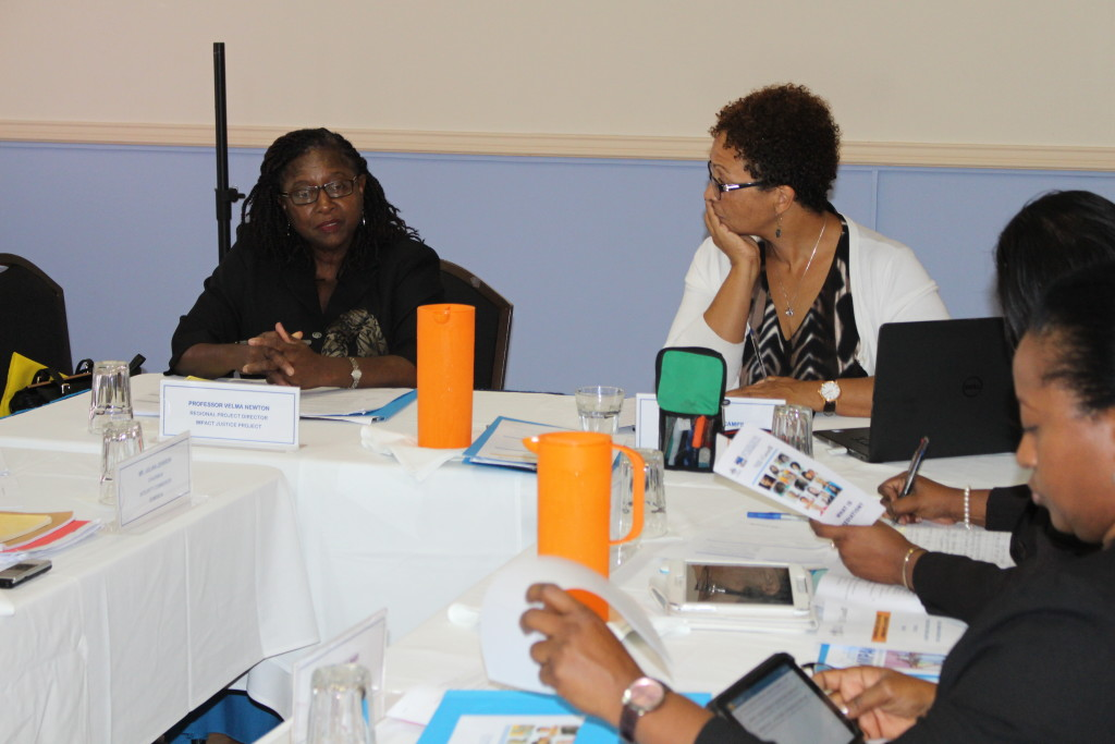 IMPACT Justice Mediation Legislation Committee Meets to discuss Model Mediation Bill drafted by IMPACT Justice